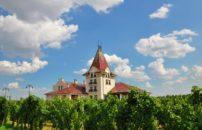 Izlet Morahalom vikend Palić, Segedin vinarija